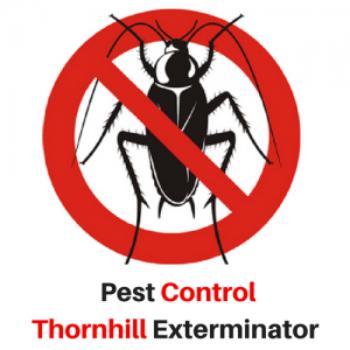 Pest Control Thornhill Exterminator