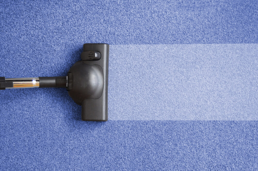 Renting a Carpet Cleaner versus hiring a Professional Carpet Cleaning Service